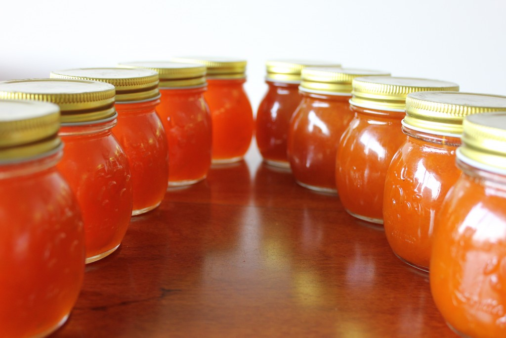 Golden apricot and cinnamon jam